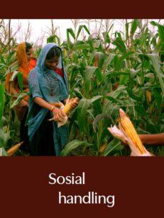 Sosial handling